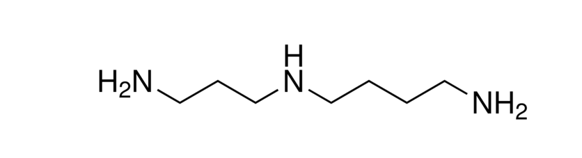 Spermidine ≥99%